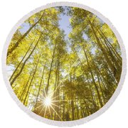 Aspen Day Dreams Round Beach Towel