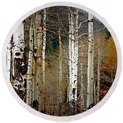 Aspen In The Rockies Round Beach Towel