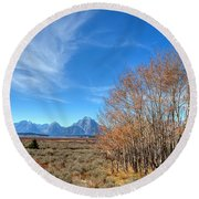 Round Beach Towel featuring the photograph Aspen Last Stand  by David Andersen