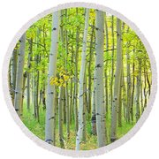 Aspen Tree Forest Autumn Time  Round Beach Towel