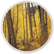 Aspen Trees In Autumn, Colorado, Usa Round Beach Towel
