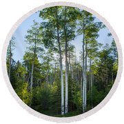 Aspens At Sunrise 1 - Santa Fe New Mexico Round Beach Towel