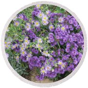 Asters Light And Dark Round Beach Towel