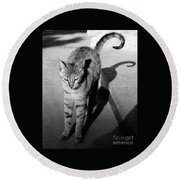 Aswan Cat Round Beach Towel