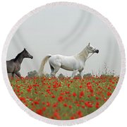 Round Beach Towel featuring the photograph At The Poppies' Field... 2 by Dubi Roman