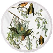Audubon Crossbill Round Beach Towel