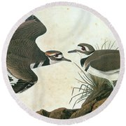 Audubon Killdeer Round Beach Towel