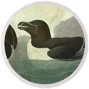 Audubon Razorbill Round Beach Towel