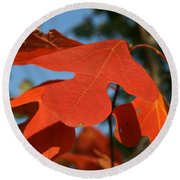 Round Beach Towel featuring the photograph Autumn Attention by Neal Eslinger