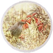 Autumn Catbird Round Beach Towel