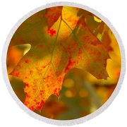 Autumn Colored Round Beach Towel