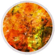 Nature Round Beach Towel featuring the photograph Autumn Colors by Aaron Berg