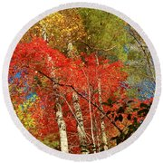 Autumn Colors Round Beach Towel by Patrick Shupert