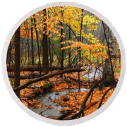 Round Beach Towel featuring the photograph Autumn Creek In The Rain by Rodney Lee Williams