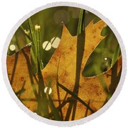Autumn Dew Round Beach Towel by Penny Meyers