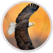 Autumn Eagle Round Beach Towel