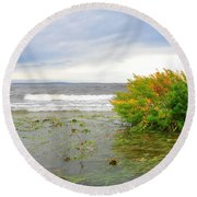 Round Beach Towel featuring the photograph Autumn Flood by Randi Grace Nilsberg