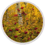Autumn Forest Colors Round Beach Towel by Leland D Howard