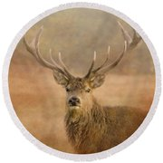 Magnificant Stag Round Beach Towel