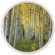 Autumn In The Aspen Grove Round Beach Towel