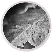 Autumn Leaves B And W Round Beach Towel