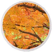 Round Beach Towel featuring the photograph Autumn Leaves by Rachel Mirror