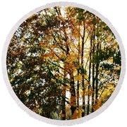 Autumn Light Round Beach Towel by Barbara Bardzik