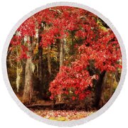 Round Beach Towel featuring the photograph Autumn Maple 2 by Kelly Nowak