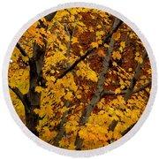 Autumn Moods 21 Round Beach Towel by Rodney Lee Williams