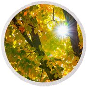 Autumn Morn Round Beach Towel