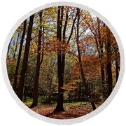 Round Beach Towel featuring the photograph Autumn Picnic by Debbie Oppermann