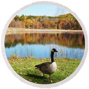 Autumn Pond Goose Round Beach Towel by Aimee L Maher Photography and Art Visit ALMGallerydotcom