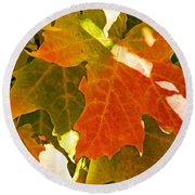 Autumn Sunlight Round Beach Towel