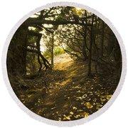 Autumn Trail In Woods Round Beach Towel