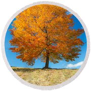 Autumn Tree - 1 Round Beach Towel