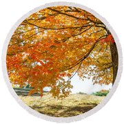 Autumn Tree - 2 Round Beach Towel
