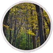 Round Beach Towel featuring the photograph Autumn Trees Alley by Sebastian Musial