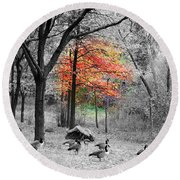 Autumn With A Touch Of Color Round Beach Towel by Dora Sofia Caputo Photographic Art and Design