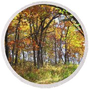Autumn Woods Round Beach Towel