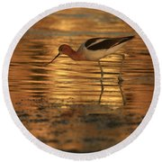 Avocet Gold Round Beach Towel