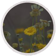 Round Beach Towel featuring the photograph Az Flowers by Rod Wiens