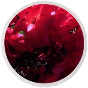 Round Beach Towel featuring the photograph Azalea Abstract by Robyn King