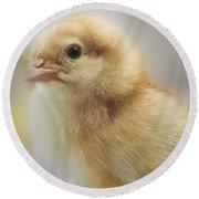 Baby Chicken Round Beach Towel