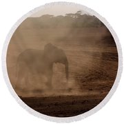 Round Beach Towel featuring the photograph Baby Elephant  by Amanda Stadther