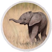 Elephant Calf Painting Round Beach Towel