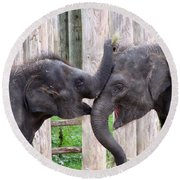 Baby Elephants - Bowie And Belle Round Beach Towel by Pamela Critchlow