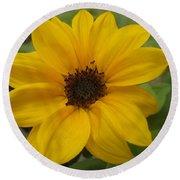 Baby Sunflower Round Beach Towel