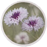 Bachelor Buttons - Flowers Round Beach Towel by Kim Hojnacki