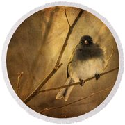Backlit Birdie Being Buffeted  Round Beach Towel