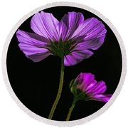 Backlit Blossoms Round Beach Towel